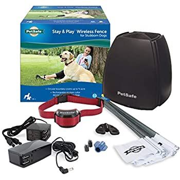 Amazon Com Petsafe Stay Amp Play Wireless Fence For
