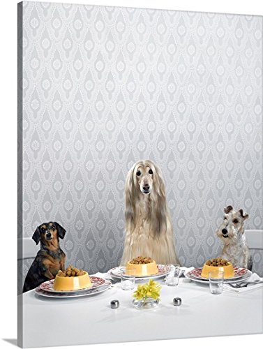 Great BIG Canvas Gallery-Wrapped Canvas entitled Dachshund, Afghan hound, and wire-haired terrier sitting at a dinner table