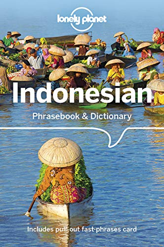 E.B.O.O.K Lonely Planet Indonesian Phrasebook & Dictionary<br />[K.I.N.D.L.E]
