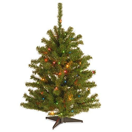 Prugist Illuminati Collection 3' Eastern Spruce Tree with 50 Multi s (Christmas Illuminati Tree)