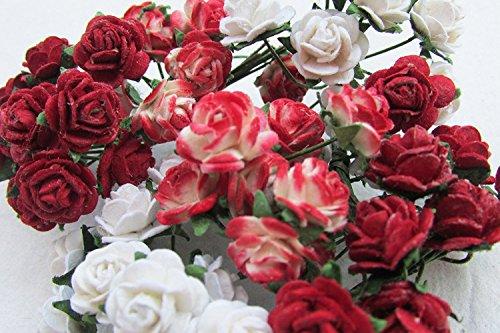 Rose Scrapbooking - 4