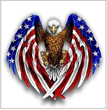 Pegatina/adhesivo del águila calva con la bandera americana: Amazon.es: Coche y moto