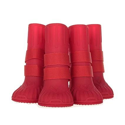 a80d028193096 Amazon.com : Haoweidaoshanghang Dog Shoes, Golden Retriever ...