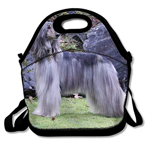 Animal Afghan Hound Dogs Lunch Bags Insulated Travel Picnic Lunch Box Tote Handbag With Shoulder Strap For Women Teens Girls Kids -