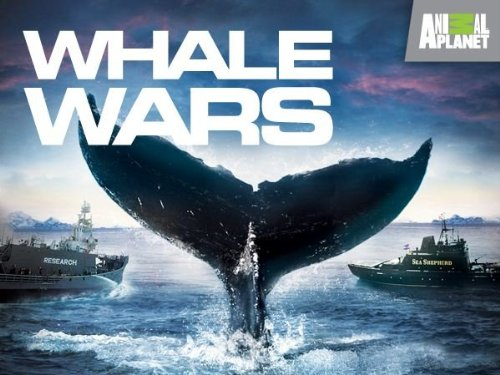 Amazon Com Whale Wars Season 1 Inc Discovery