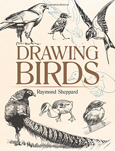 drawing-birds-dover-art-instruction