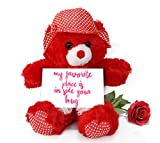 TiedRibbons Valentine's Day Gifts for Wife Teddy Bear with Valentine's Special Greeting card and Red Rose