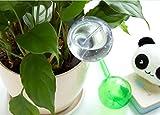 WarmShine 6 Pcs Garden Watering Globes Automatic