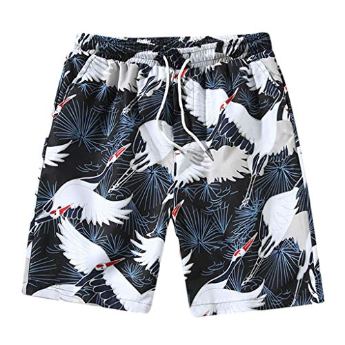 Men's Cool Swimtrunks Quick Dry 3D Printed Casual Hawaiian Mesh Lining Beach Board Shorts with Pockets, MmNote