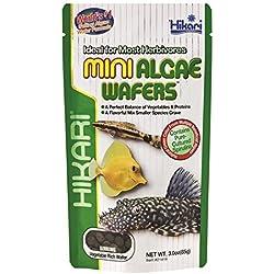 Hikari Usa Inc AHK21416 Mini Algae Wafers 3 -Ounce