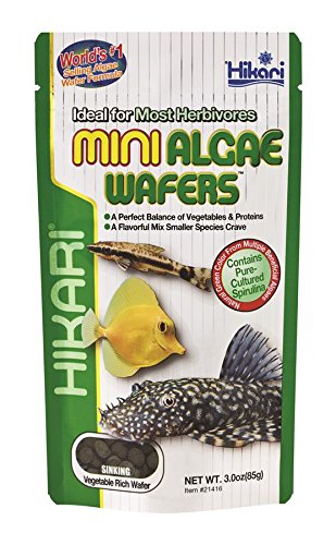 Hikari Usa Inc AHK21416 Mini Algae Wafers 3 ()