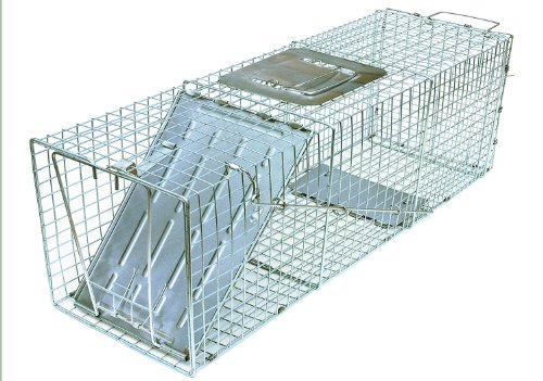 - JT Eaton 497 Answer Galvanized Steel Wire Single Door Professional Live Animal Cage Trap, 16
