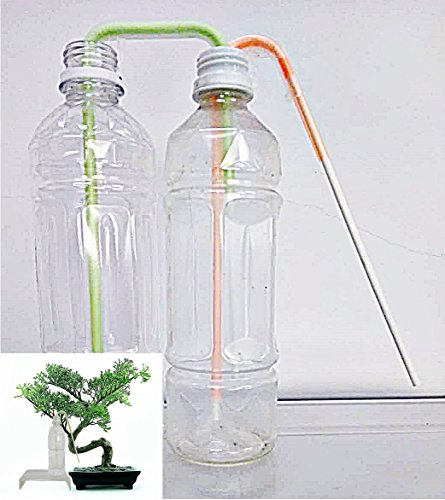 Richson Self Watering Stick DB,Two Weeks Self Watering Tool for Bonsai Trees,2pcs/pack Bonsai Watering Can