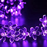 Cheap Okcolorfal Garden Decoration Lights String Solar Powered LED Lights with Solar Panel, 7m 50 Flower Lights Fairy Lighting for Christmas Trees Party Wedding Holiday (Purple)