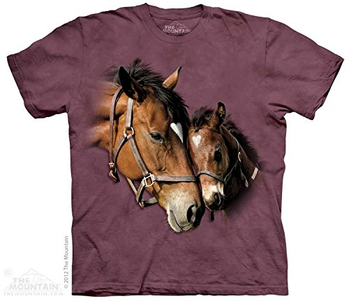The Mountain Kids Two Hearts T-Shirt, X-Large, Plum