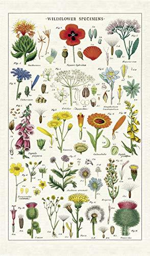 Cavallini & Co. Wildflowers Tea Towel, Multicolor
