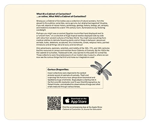 Action Paper Mousepad · Cabinet of Curiosities: Dragonfly · Alternating Lined, Isometric, Grid and Dot Notepad, Watermarked With Animal Illustrations (3 Pack)