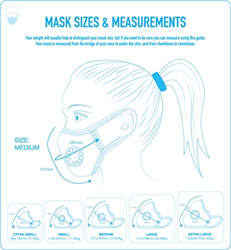 Cambridge Mask Co Pro Anti Pollution N99 Washable Military Grade Respirator with Adjustable Straps - LadyMacbeth M Pro