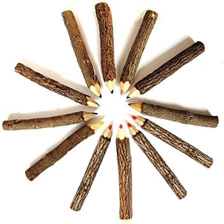 Toyandona in legno 9-10 cm Matite colorate a forma di ramo di albero colori misti per disegnare