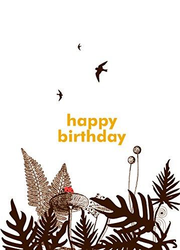 - Lark Press Fern and Ladybug Birthday Card, 3.5 X 4.75 (1)