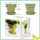 "Rustic Charm 6"" Planter - Fine Home Décor Ceramic Indoor Pot. Perfect for Herbs, Flowers, Succulents or Starting Seeds. Beautifully Packaged, Great Gift for Mom, Office, Housewarming. (Verde)"