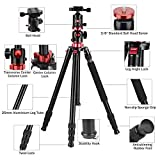 ZOMEI Camera Tripod 72 inch Portable Professioional Aluminium Monopod 4 Section Professional Tripods with 360 Degree Ball Head QR Plate for Canon Nikon DSLR DV Scope Camcorder and Projector