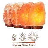 """Himalayan Salt Lamp 8-10"""" (7-11 lb) with Dimmer"""