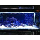 T Tocas(tm) LED Aquarium Fish Tank Light Lighting Underwater Tanks Lamp Bar (Blue/White, 22-inches)