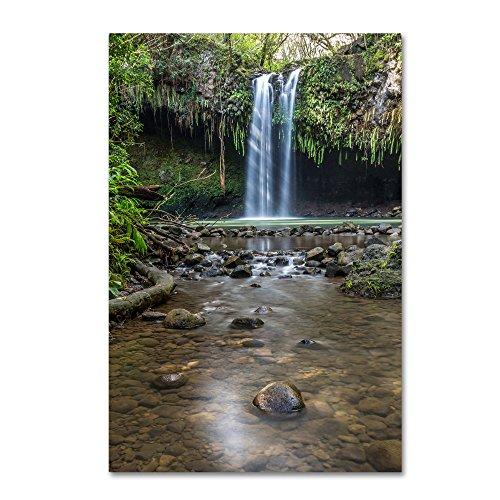 Twin Falls Sunlight by Pierre Leclerc, 16x24-Inch Canvas Wall - Falls Maui Twin