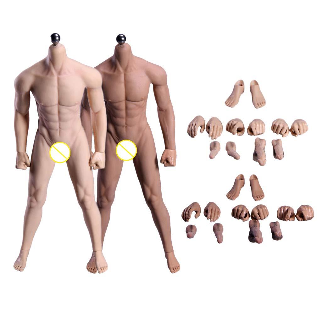 FLAMEER 2 Stück 1 6 Scale Herren Nahtloser Körper mit Zubehör, Normalhaut + Weißenhaut