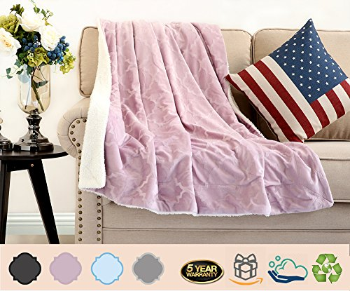 Luxury Sherpa Throw Fleece Blanket Faux Fur Fuzzy Microfiber Cozy Ultra Plush for Bed/Couch/Sofa,Super Soft Warm Lightweight,Caring Gift TV Blankie (Twin 60x80