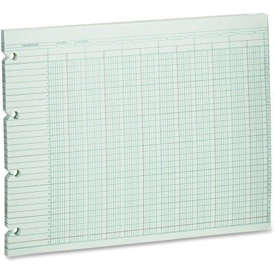 WLJG3020 - Wilson Jones Accounting Sheets by Wilson Jones