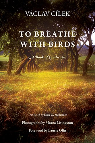 To Breathe with Birds: A Book of Landscapes (Penn Studies in Landscape Architecture)