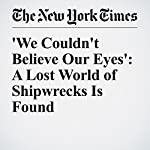 'We Couldn't Believe Our Eyes': A Lost World of Shipwrecks Is Found | William J. Broad