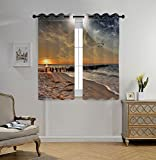 iPrint Stylish Window Curtains,Space,Magical Solar Eclipse on Beach Ocean with Horizon Sun Moon Globe Gulls Flying View,Cream Orange,2 Panel Set Window Drapes,for Living Room Bedroom Kitchen Cafe