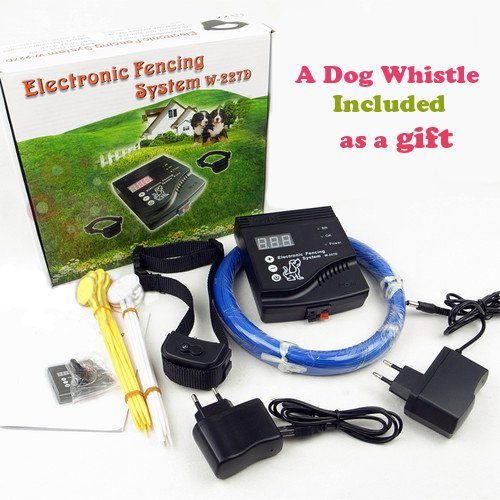 Rechargeable Waterproof Electronic Training Included