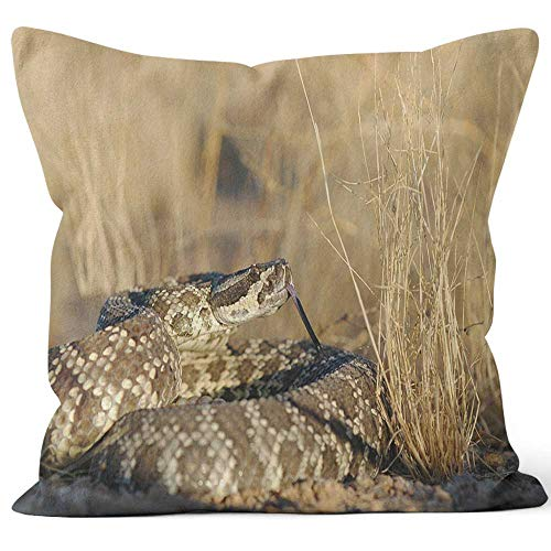 Nine City Southern Pacific Rattlesnake Throw Pillow Cover,HD Printing for Sofa Couch Car Bedroom Living Room D¨¦cor,28