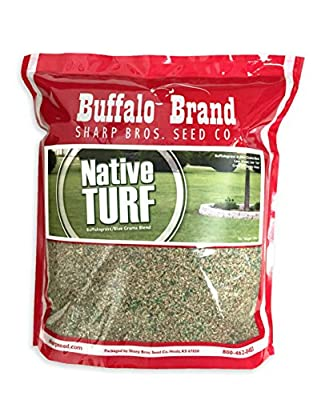 Native Turf By Sharp Bros. Seed Co