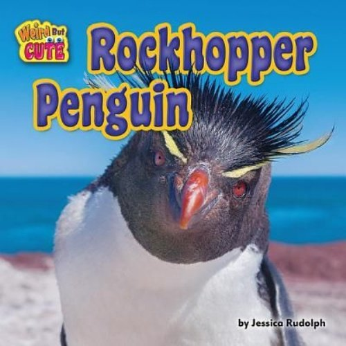 Rockhopper Penguin (Weird but Cute) (Penguin Rudolph)