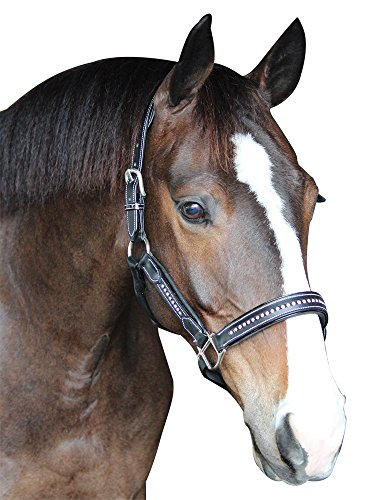 Henri de Rivel Padded Crystal Halter Horse ()