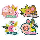 Lucy Darling Monthly Baby Stickers - Baby Girl - Little Blossom - Months 1-12