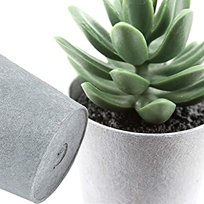 LuckyGreenery Artificial Plant