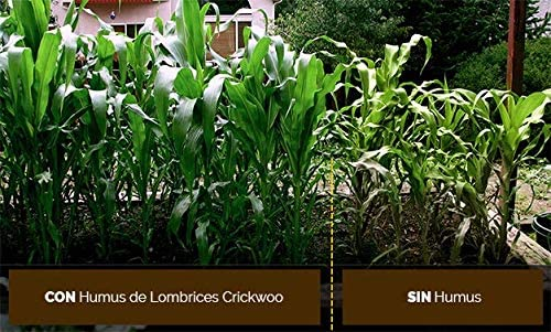 Crickwoo Humus de lombriz 25L (15 kg): Amazon.es: Jardín
