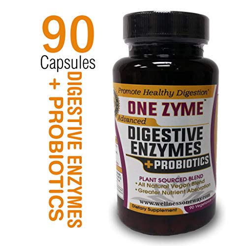 OneZyme - Best Digestive Enzymes Supplement with Probiotics - Plant Based Protease, Amylase, Lactase, Lipase to Support Healthy Digestion - Serving 3 Times Daily - 90 Capsules