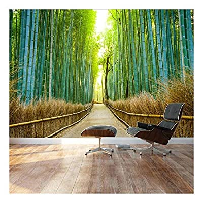Bamboo Forest with a Cleared Path Headed into...