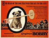 Greyfriars Bobby Movie Poster (11 x 14 Inches - 28cm x 36cm) (1961) Style A -(Donald Crisp)(Laurence Naismith)(Kay Walsh)