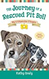 the journey of a rescued pit bull my lil superstar d angelo