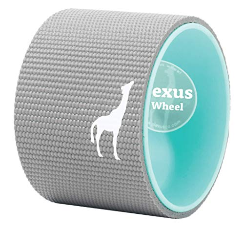 Plexus Wheel - YOGA PRO SERIES - Only Yoga Wheel Made in the USA! - Doesnt Break Down like other Yoga Wheels - Strongest & Most Comfortable Dharma Yoga Prop Wheel - 20,000+ Customers (6-inch)