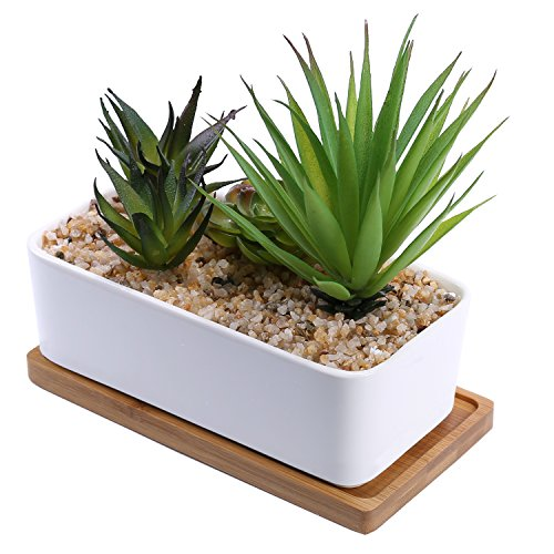 Artificial Succulent Plants Assortment in Rectangular White Ceramic Planter with Bamboo Saucer