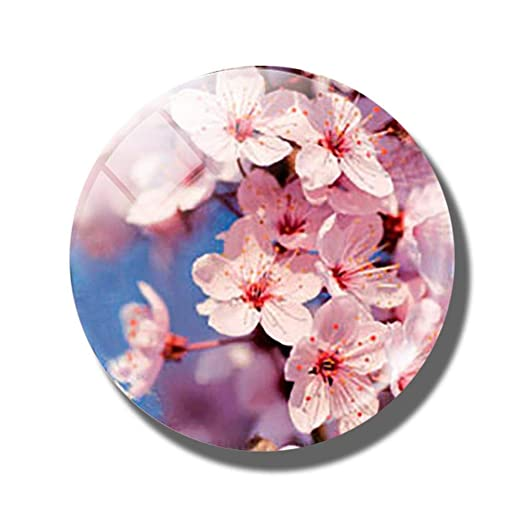 AGGIEYOU 3pcs Flor 30 MM Imán de Nevera de Cristal Rosa Diente de ...